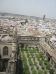 The view of Catedral de Sevilla and the orange trees from La Giralda